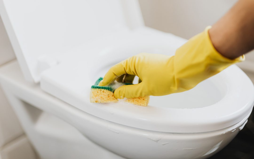 How to get rid of toilet ring: 7 ways to a sparkling clean toilet?